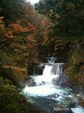 > 日時: 2010年11月12日14:38:47 > > 前に来た時より紅葉キレイではなかったような気がした。> > >by  kazuo 480x640(130KB)