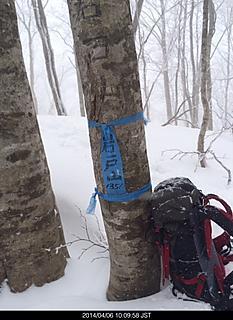 長野白馬村の里山、岩戸山は吹雪です。山頂標識、青フンドシみたい。(笑)by ゲストさん 466x640(124KB)