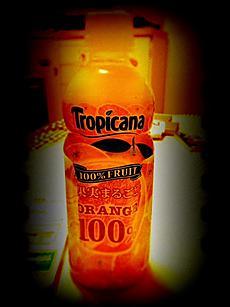 100%オレンジジュース美味しいよ。by  kazuo 480x640(96KB)