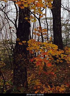 掃部ヶ岳の登山道は紅葉がありましたが少し早いようでした。by ゲストさん 466x640(186KB)