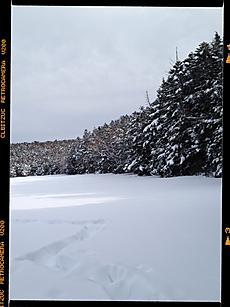 北八ヶ岳の白駒池にいって来ました。雪が沢山有りましたよ。気温もあまり低くなくて、でも道路歩きはウンザリでした。by  kazuo 480x640(101KB)