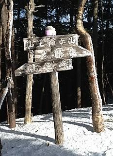 スノーシューで登頂by  kazuo 265x365(48KB)