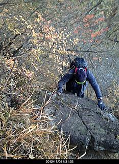 男坂から登ったが、思ったより楽に登れました。by  kazuo 466x640(124KB)