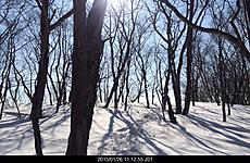 トレースが無く雪は緩みハードな山行となったby ゲストさん 640x416(163KB)