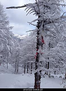 藪原高原スキー場からスノーシューで奥峰へ。雪深くパウダースノーすぎて腰まで埋まります。踏み抜きが多くなり大笹沢山まで行けず撤退。奥峰すぎ引き返しました。by ゲストさん 466x640(151KB)