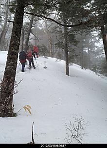 03/19 曇り 稜線ガス 気温マイナス3度曇りで展望がありませんでした。4人パーテーが後から来てくれて、ラッセルを交代してくれて助かりました。帰りのリフトの時間(4:00まで)に間に合わなかったので小鉢盛山から鉢盛山取付きまでで、山頂断念しました。行ってもガスで展望なかったと4人パーテーは言っていました[image: 埋め込み画像 1]。by yamanba 2448x3364(957KB)