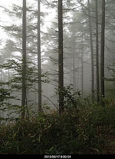 月曜日に登りました。朝靄が神秘的で撮ったけどこれ一枚しか撮りませんでした。ガスっていて展望もなく蒸し暑かった。でも駐車場は一杯でした。by  kazuo 466x640(149KB)