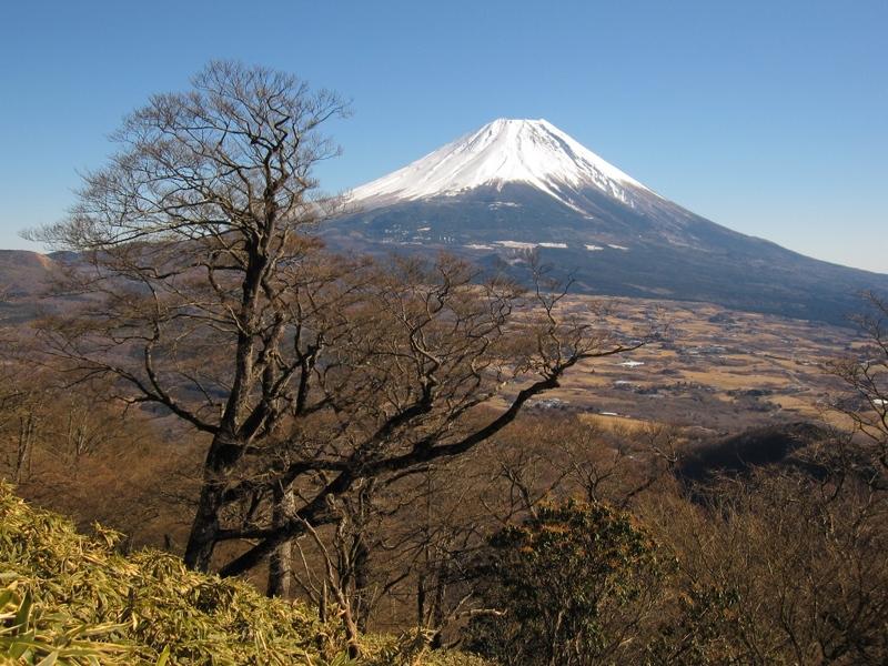 竜ヶ岳中腹から富士山