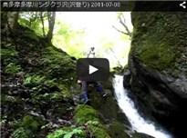 奥多摩多摩川シダクラ沢(沢登り) 2011-07-03