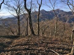 冬晴れの道 「雨山峠〜鍋割山」
