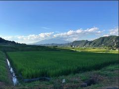 棚田と八ヶ岳