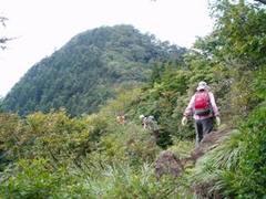 王岳 08/09/14