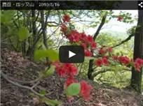 鹿岳・四ッ又山 2010/5/16