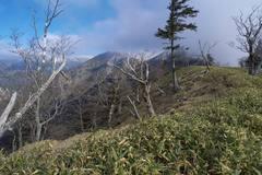 南ア深南部・丸盆岳〜黒法師岳稜線